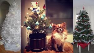 Kerstbomen-delen-op-facebook