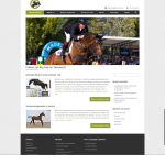 Website Stal Klaver -Homepage
